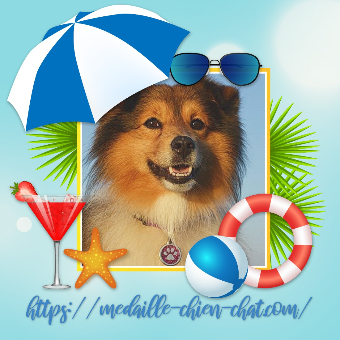 chien avec sa médaille gravée patte pailletée Red Dingo
