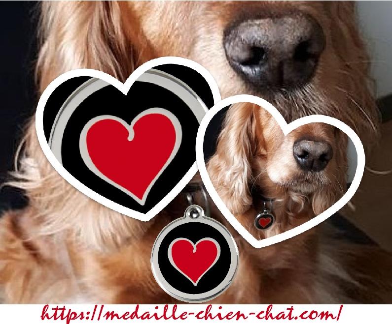 médaille gravée duo de coeur pour chiens et chats en acier émaillé Red Dingo