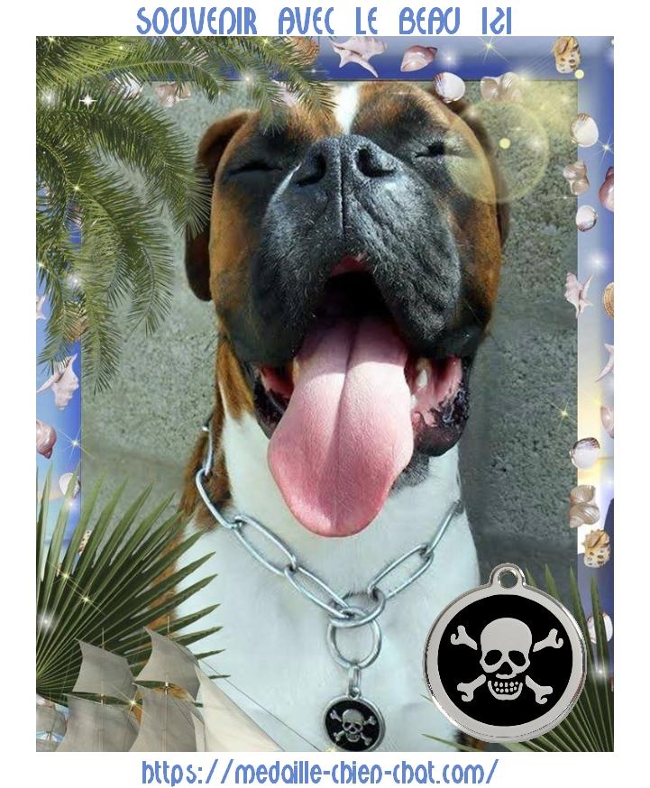 médaille Red Dingo à graver pour chiens et chats modèle Pirate