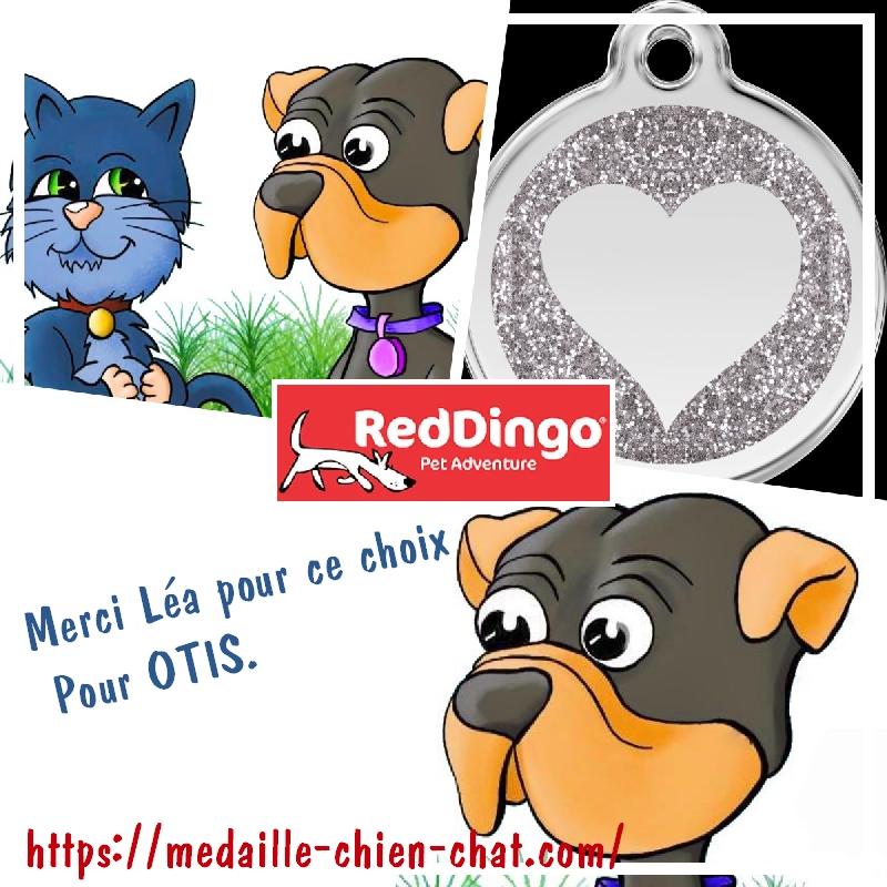 médaille gravée coeur pailleté pour chiens et chats en acier émaillé Red Dingo