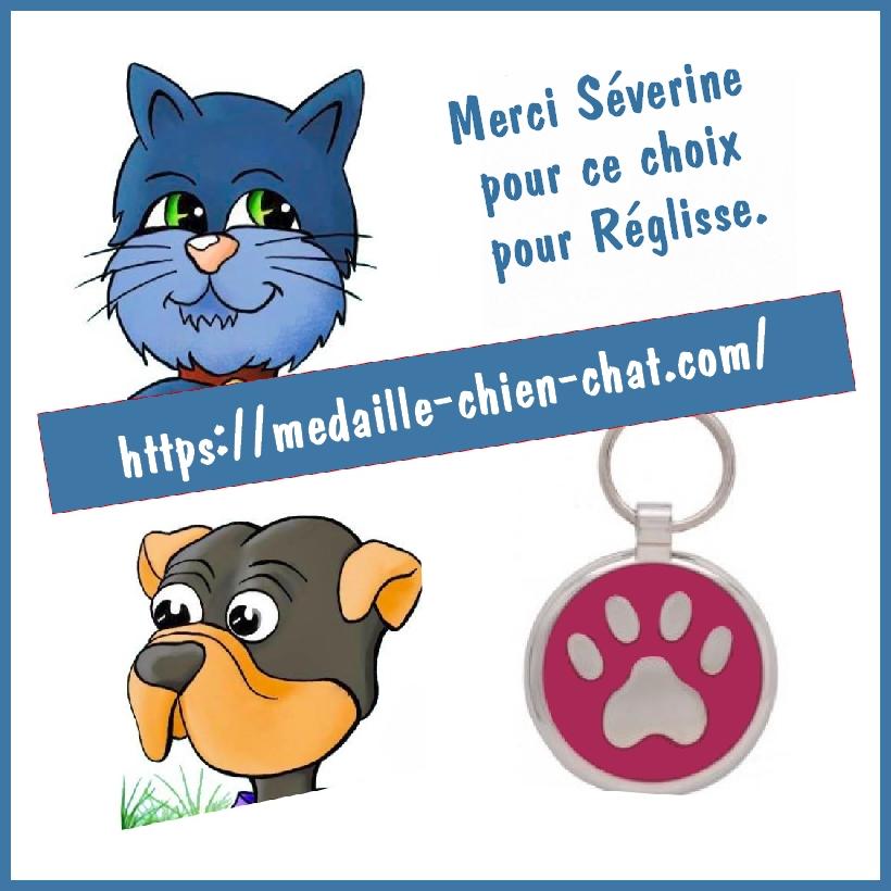 médaille gravée pour chien pawprint