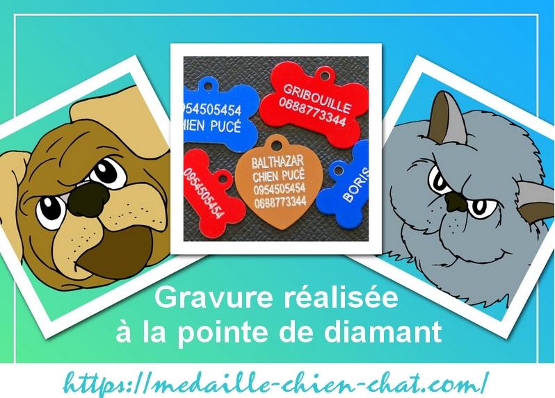 modèles de gravure pour médailles chiens chats